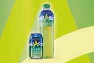 AQUARIUS LIMON 0,50 CL 24 U